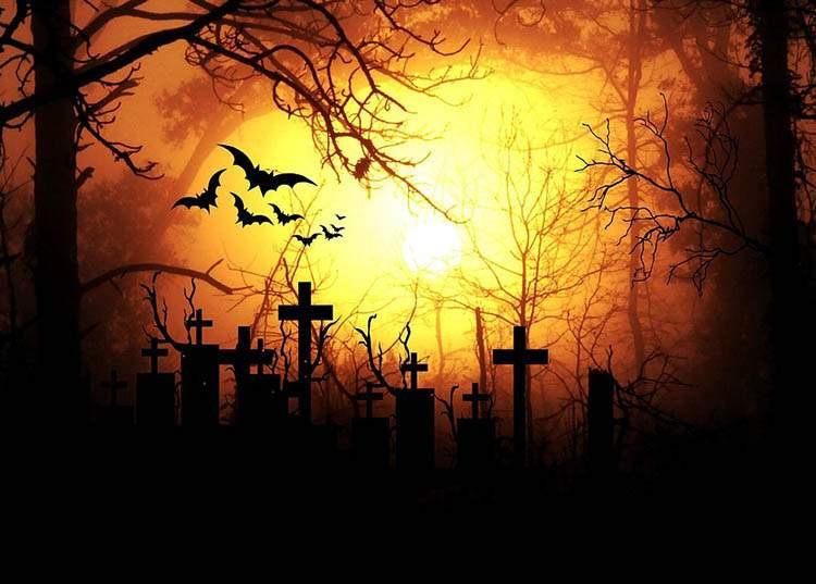 pogrzeb cmentarze ciekawostki trumna humor